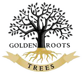 Golden Roots Trees